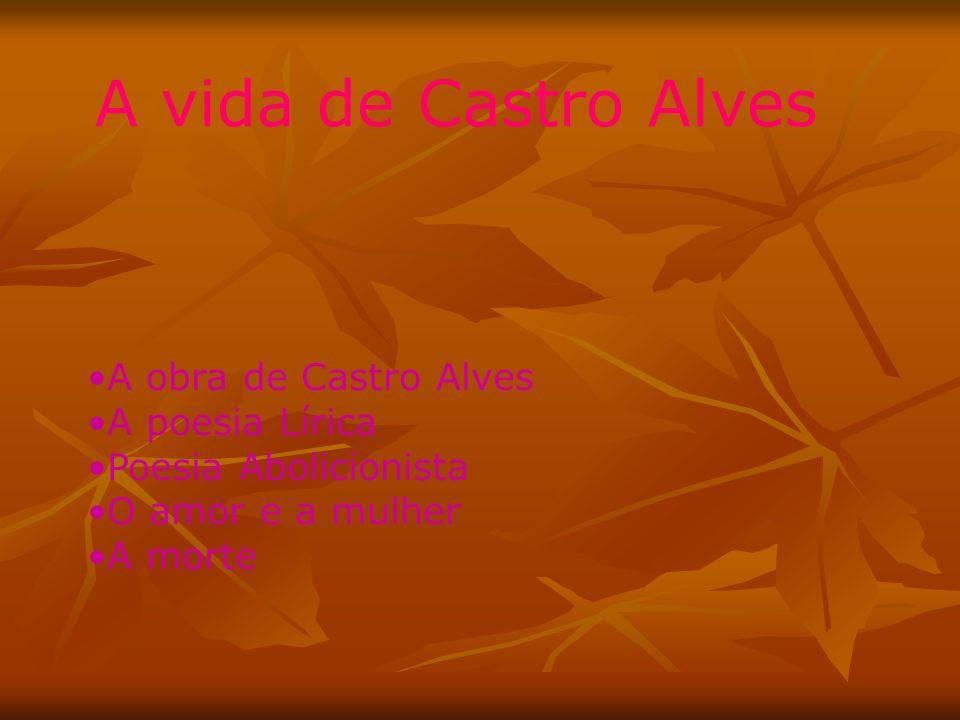 A vida de Castro Alves A obra de Castro Alves A poesia Lírica