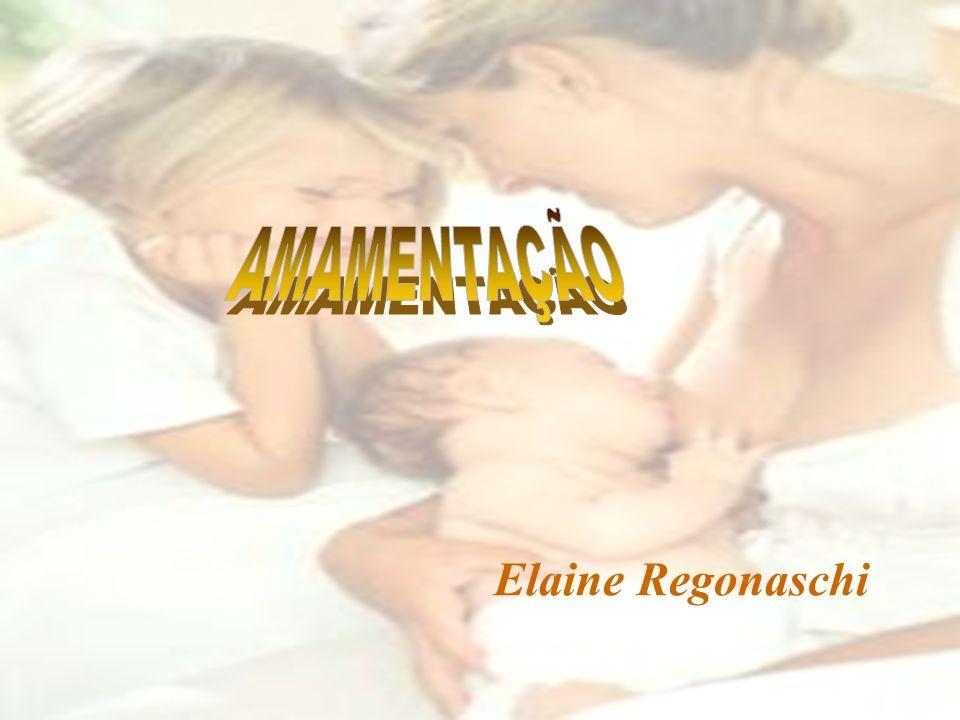 AMAMENTAÇÃO Elaine Regonaschi
