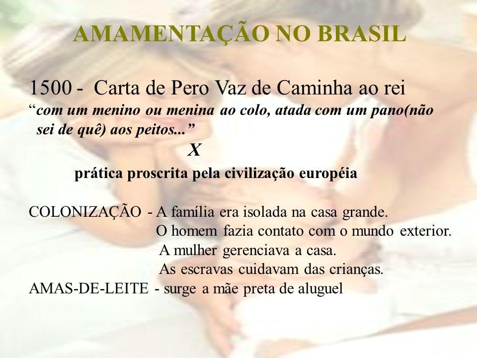 AMAMENTAÇÃO NO BRASIL 1500 - Carta de Pero Vaz de Caminha ao rei