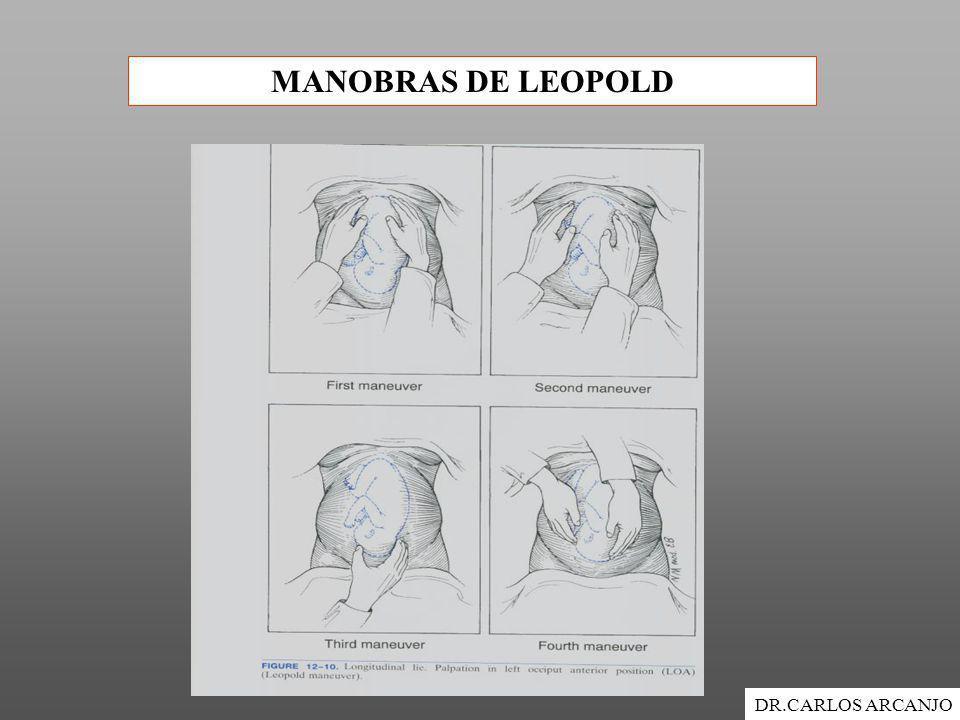 MANOBRAS DE LEOPOLD DR.CARLOS ARCANJO