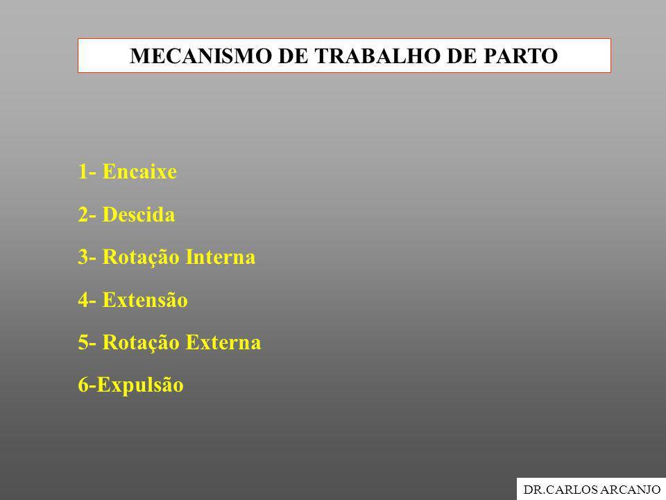 MECANISMO DE TRABALHO DE PARTO