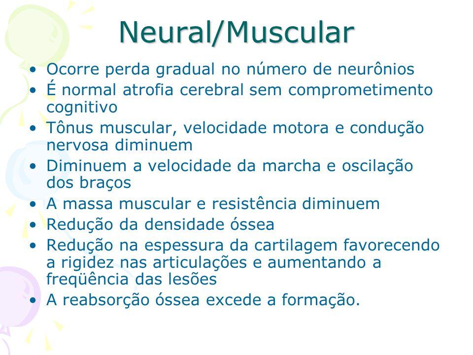 Neural/Muscular Ocorre perda gradual no número de neurônios