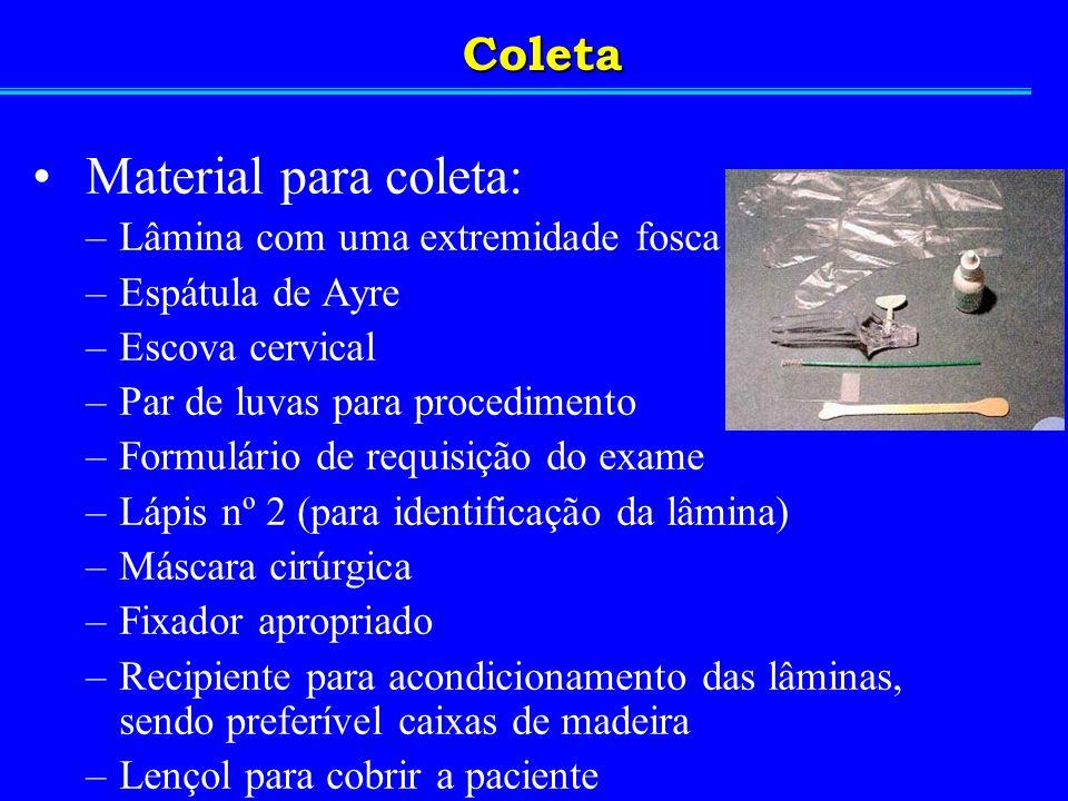 Material para coleta: Coleta Lâmina com uma extremidade fosca