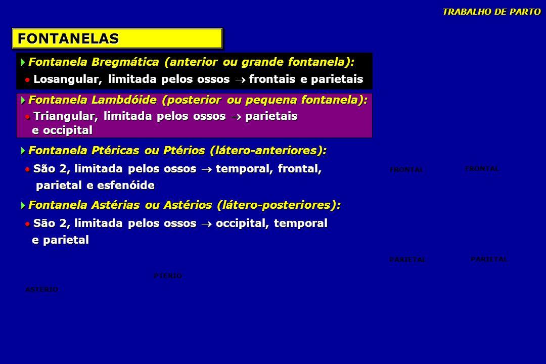 FONTANELAS Fontanela Bregmática (anterior ou grande fontanela):