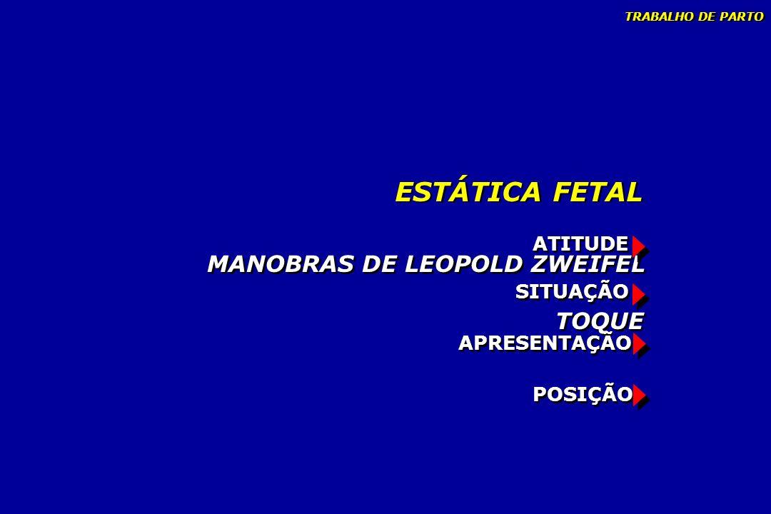 ESTÁTICA FETAL MANOBRAS DE LEOPOLD ZWEIFEL TOQUE ATITUDE SITUAÇÃO