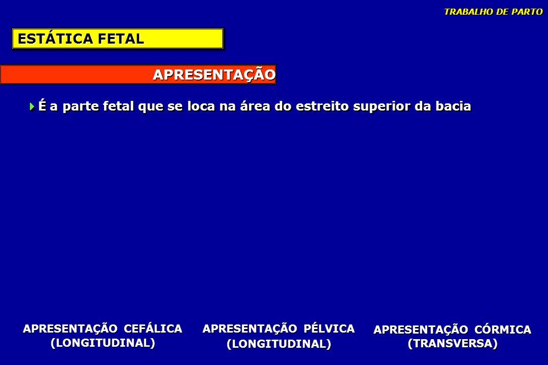 APRESENTAÇÃO CEFÁLICA