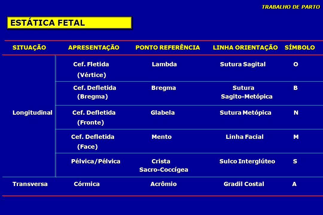 TRABALHO DE PARTO ESTÁTICA FETAL. SITUAÇÃO APRESENTAÇÃO PONTO REFERÊNCIA LINHA ORIENTAÇÃO SÍMBOLO.