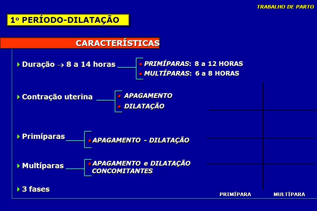 1o PERÍODO-DILATAÇÃO CARACTERÍSTICAS Duração  8 a 14 horas