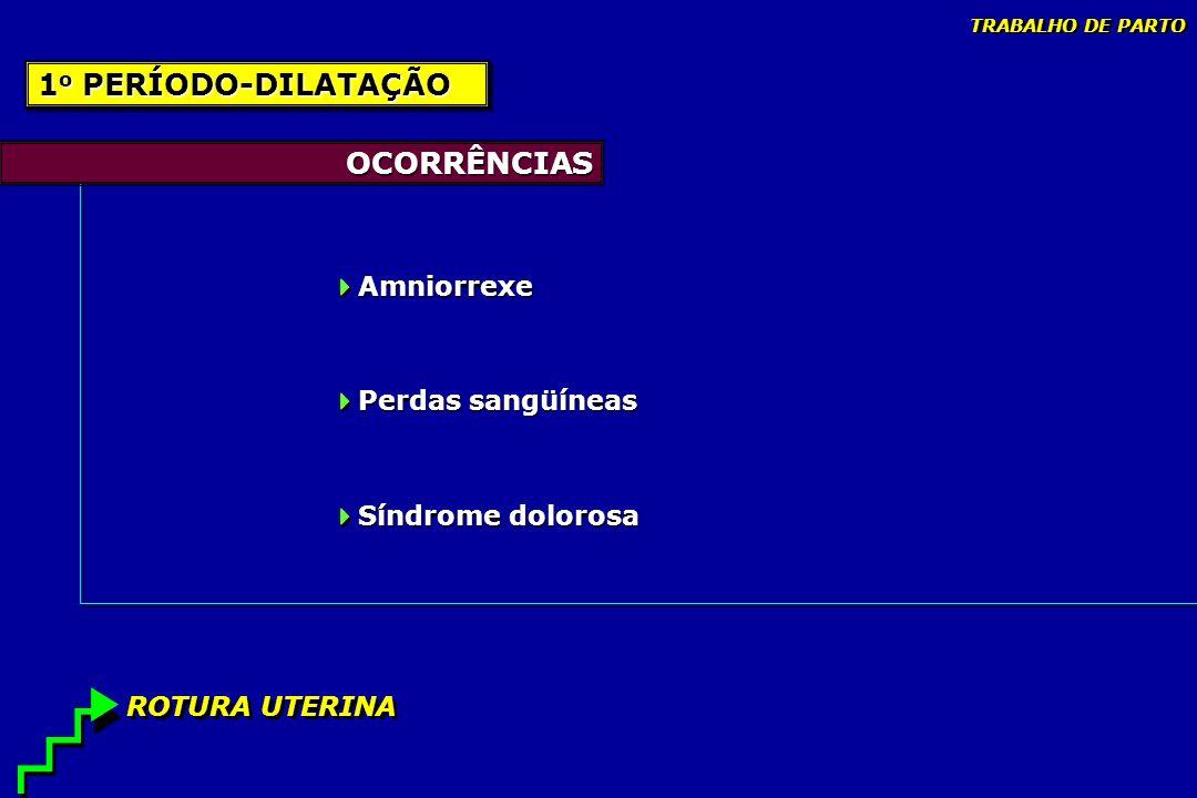 1o PERÍODO-DILATAÇÃO OCORRÊNCIAS Amniorrexe Perdas sangüíneas