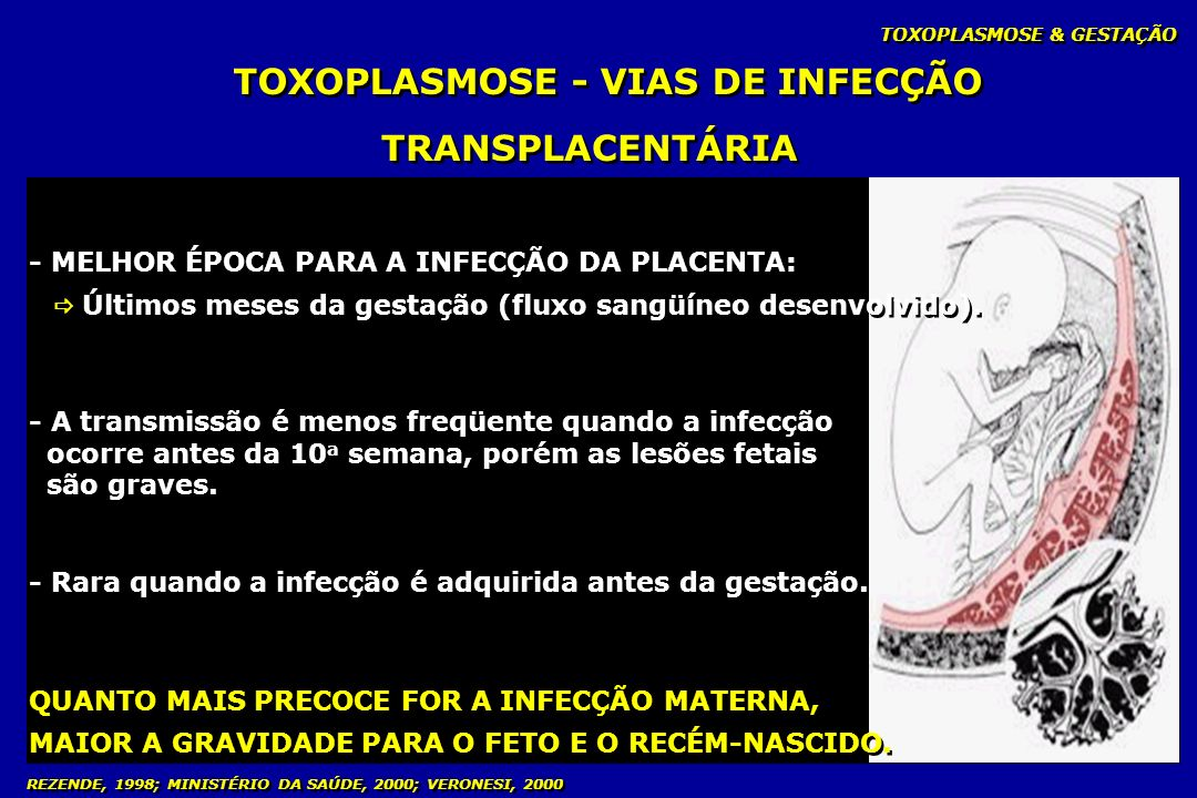 TOXOPLASMOSE - VIAS DE INFECÇÃO