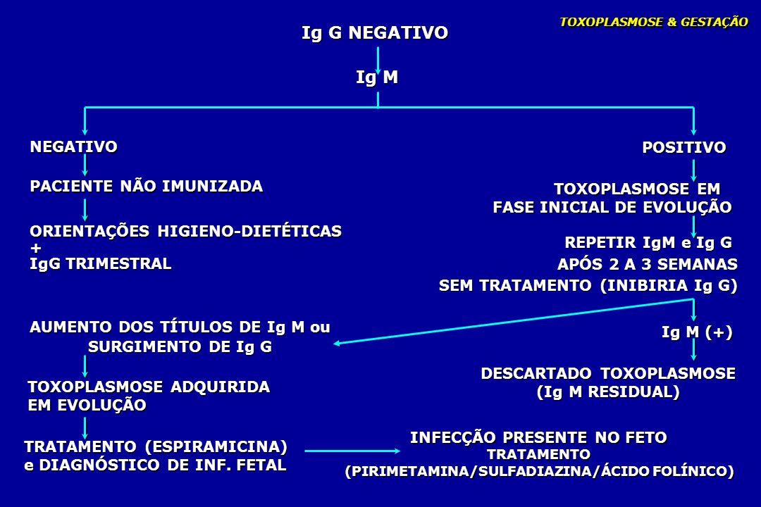 Ig G NEGATIVO Ig M NEGATIVO POSITIVO PACIENTE NÃO IMUNIZADA