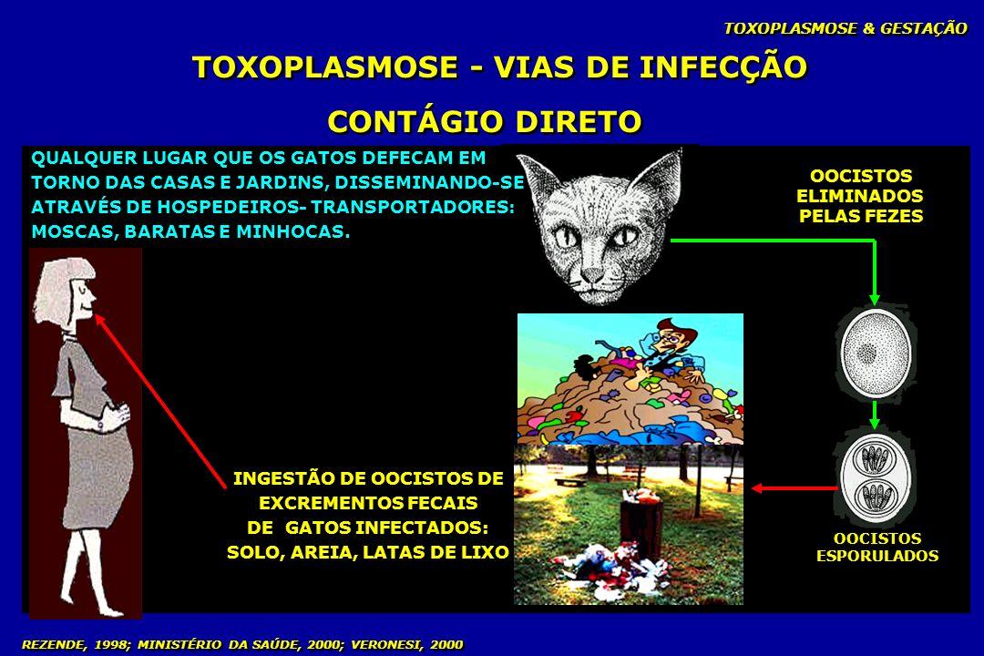 TOXOPLASMOSE - VIAS DE INFECÇÃO CONTÁGIO DIRETO