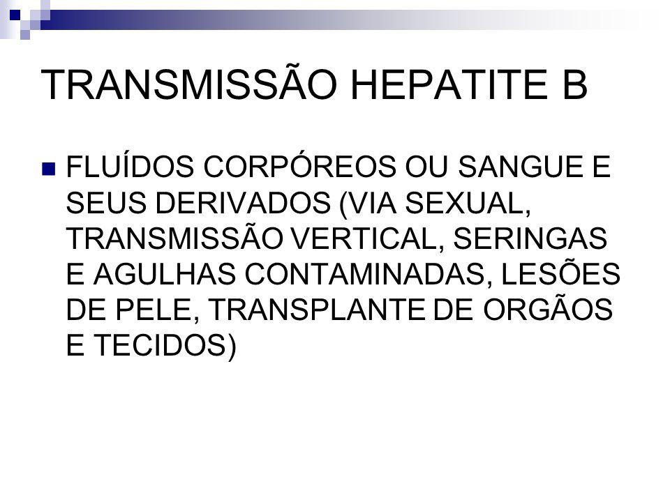 TRANSMISSÃO HEPATITE B