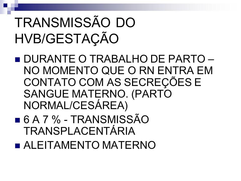 TRANSMISSÃO DO HVB/GESTAÇÃO