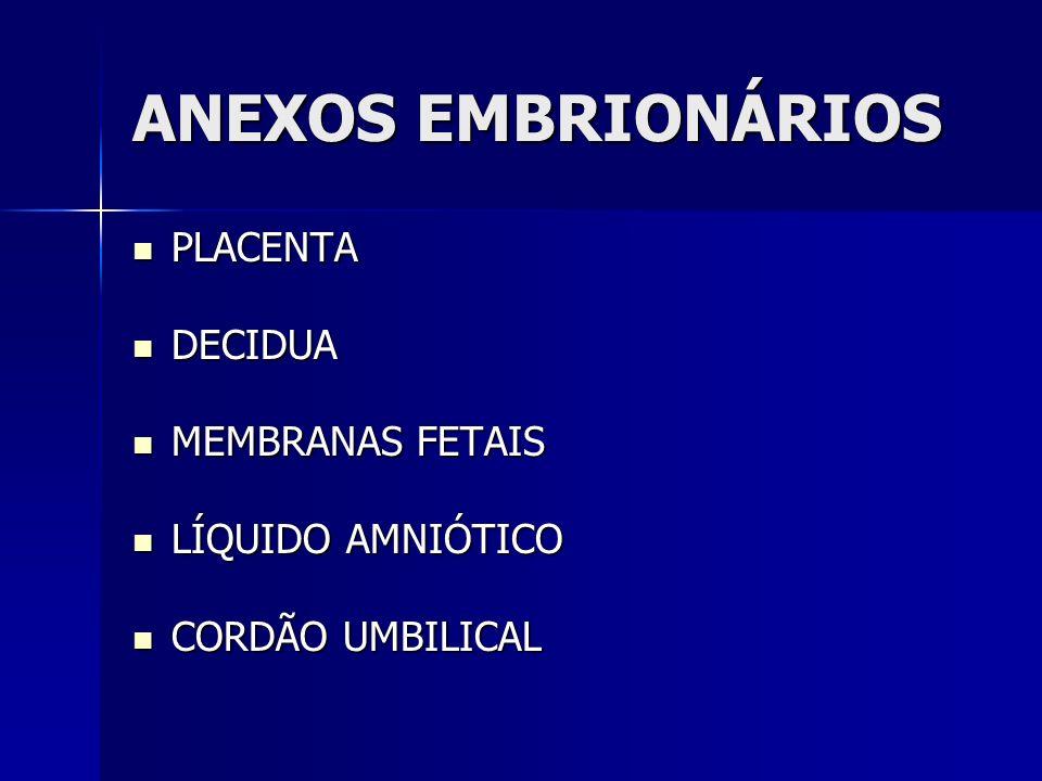 ANEXOS EMBRIONÁRIOS PLACENTA DECIDUA MEMBRANAS FETAIS