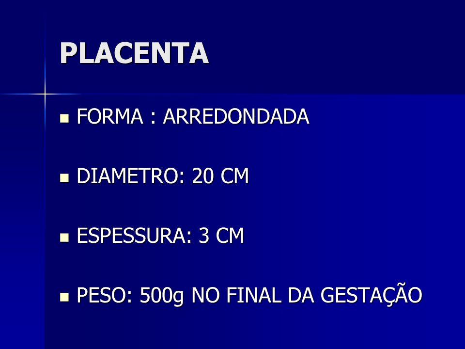 PLACENTA FORMA : ARREDONDADA DIAMETRO: 20 CM ESPESSURA: 3 CM