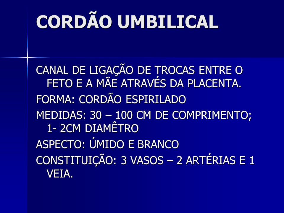 CORDÃO UMBILICAL CANAL DE LIGAÇÃO DE TROCAS ENTRE O FETO E A MÃE ATRAVÉS DA PLACENTA. FORMA: CORDÃO ESPIRILADO.