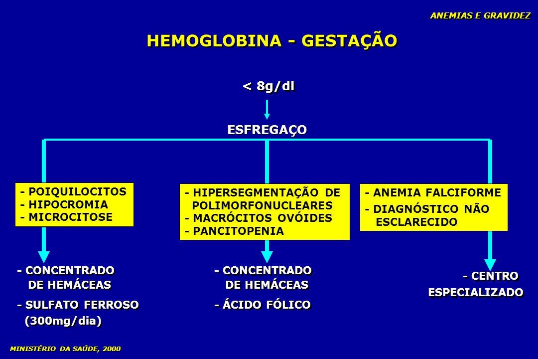 HEMOGLOBINA - GESTAÇÃO