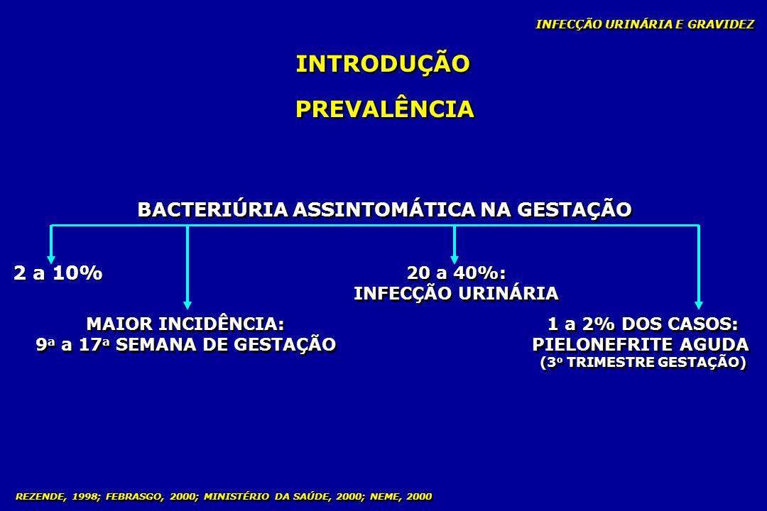 BACTERIÚRIA ASSINTOMÁTICA NA GESTAÇÃO (3o TRIMESTRE GESTAÇÃO)