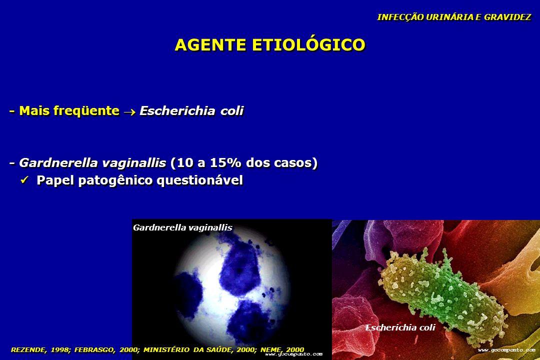 AGENTE ETIOLÓGICO - Mais freqüente  Escherichia coli