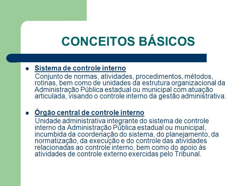 CONCEITOS BÁSICOS Sistema de controle interno