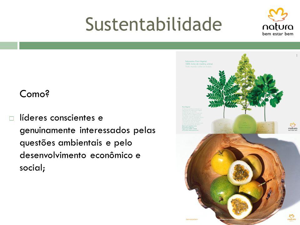 Sustentabilidade Como