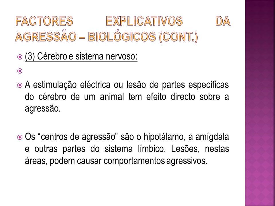 Factores explicativos da agressão – Biológicos (cont.)