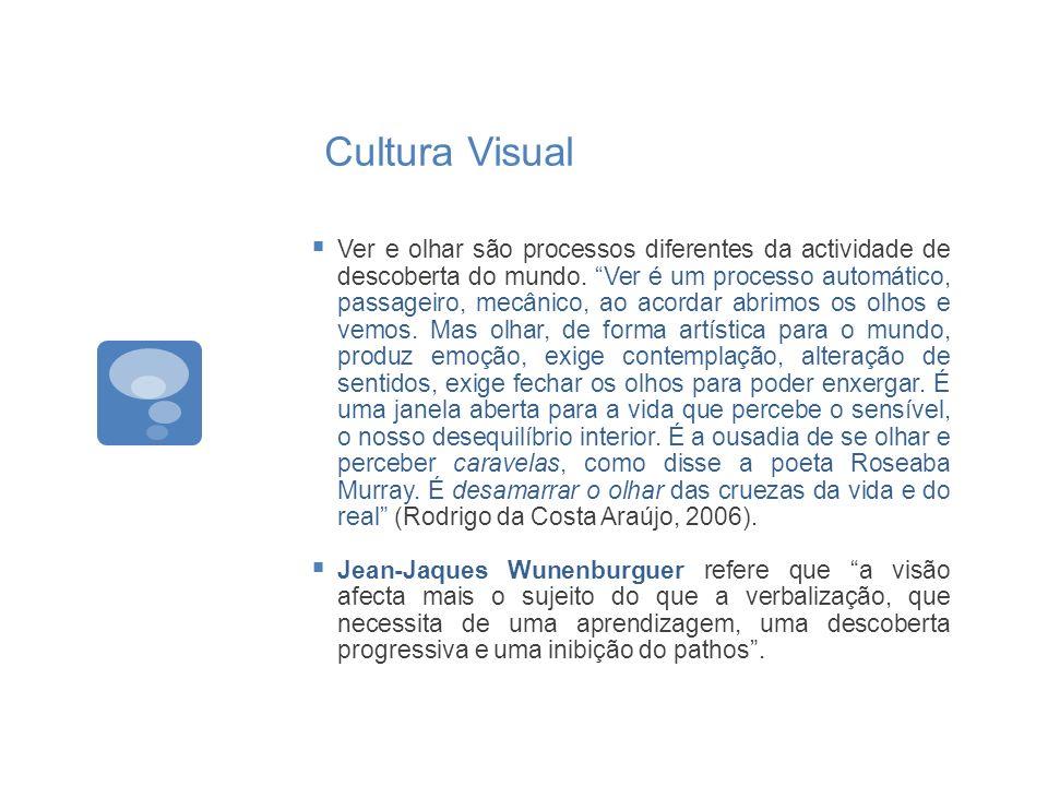 Cultura Visual