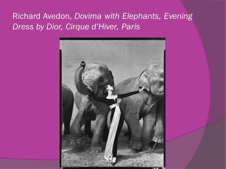Richard Avedon, Dovima with Elephants, Evening Dress by Dior, Cirque d'Hiver, Paris