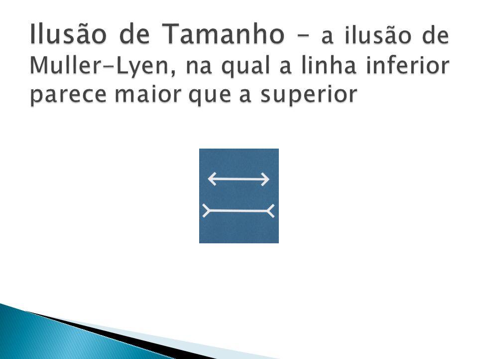 Ilusão de Tamanho – a ilusão de Muller-Lyen, na qual a linha inferior parece maior que a superior