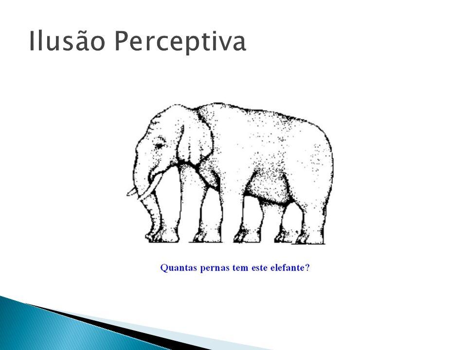 Ilusão Perceptiva