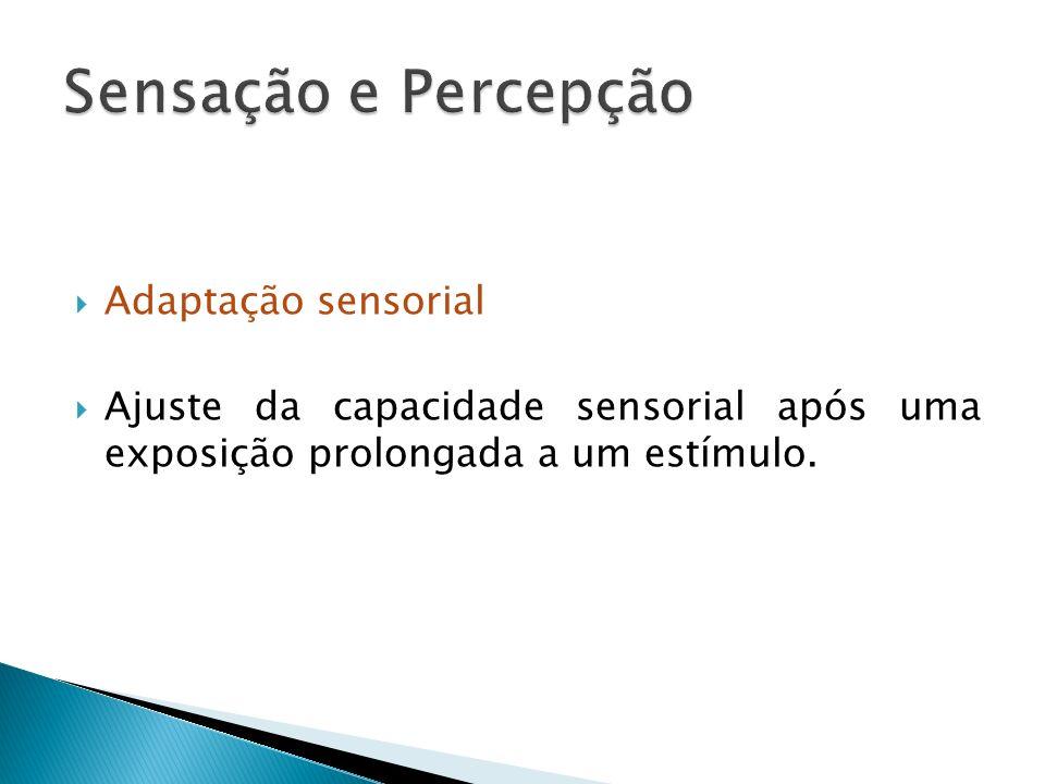 Sensação e Percepção Adaptação sensorial