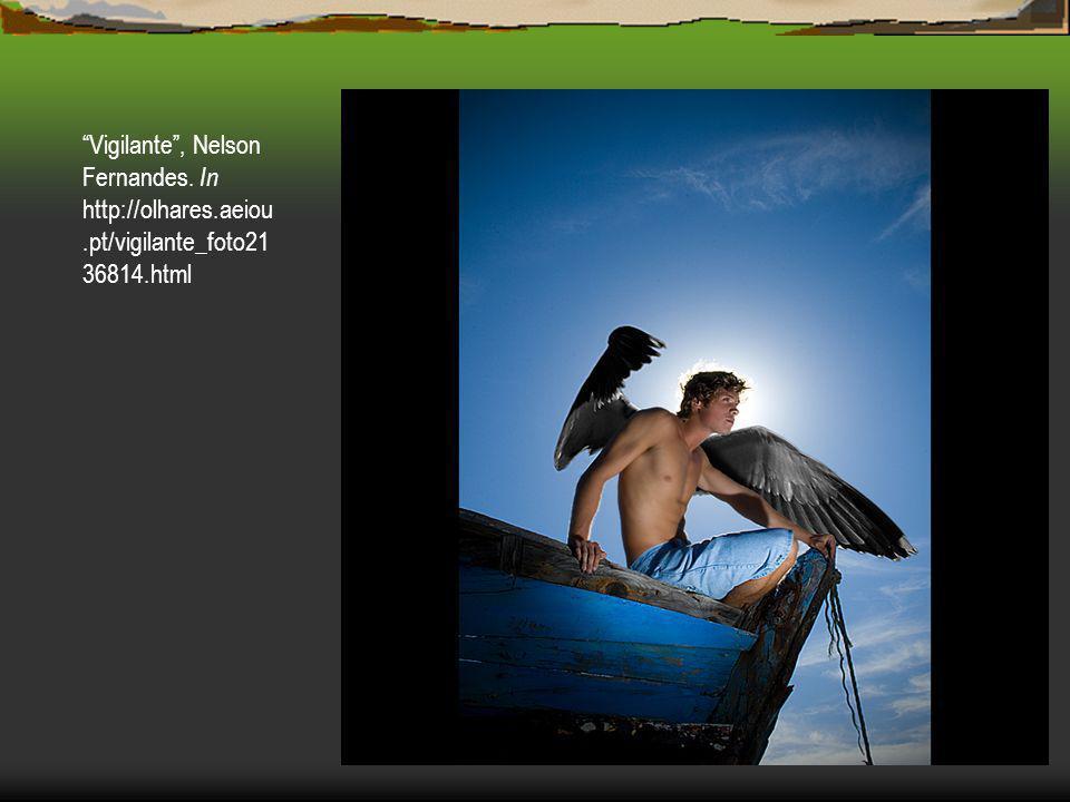 Vigilante , Nelson Fernandes. In http://olhares. aeiou