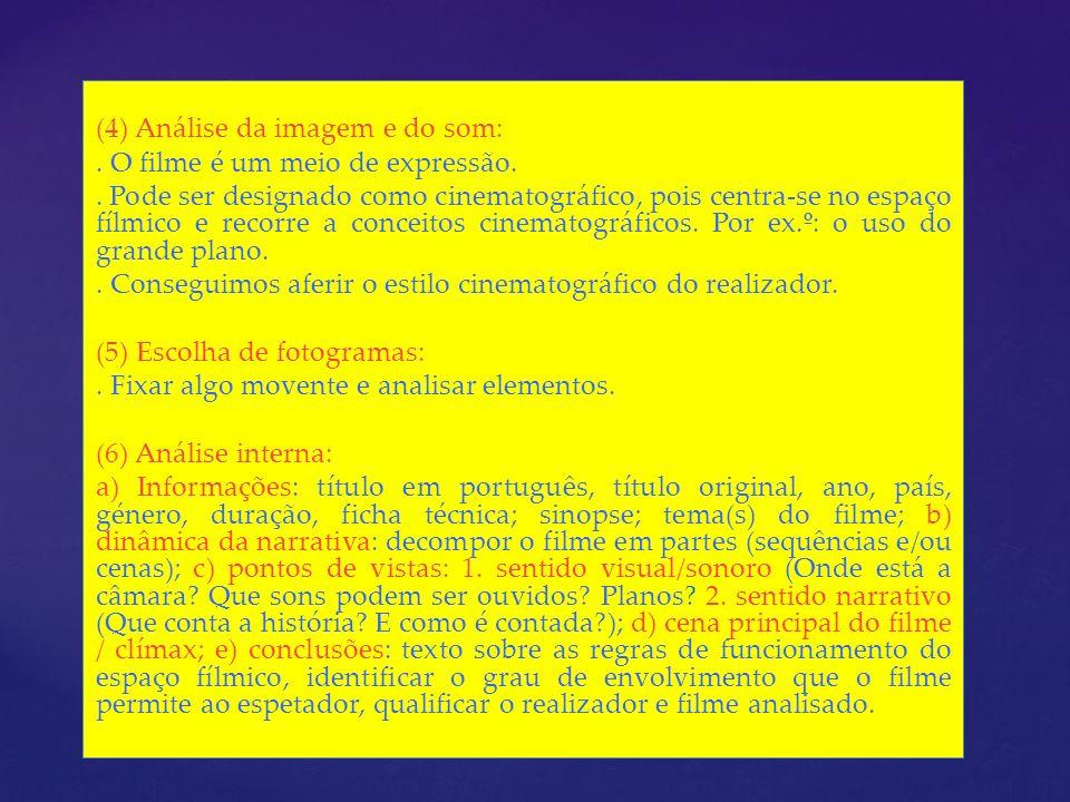 (4) Análise da imagem e do som:. O filme é um meio de expressão