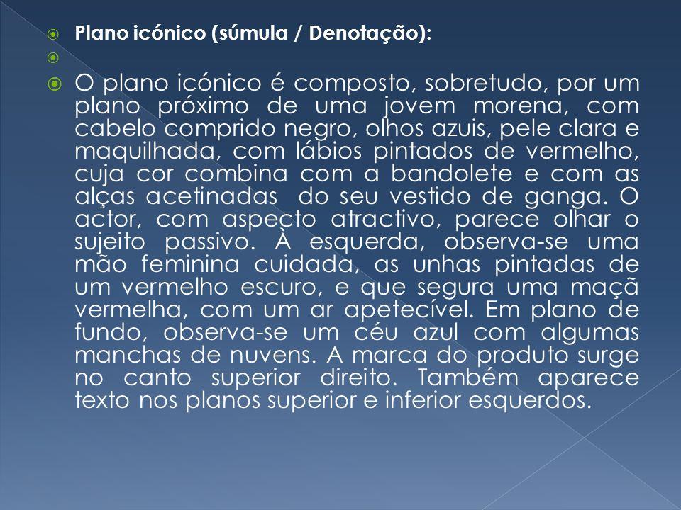 Plano icónico (súmula / Denotação):