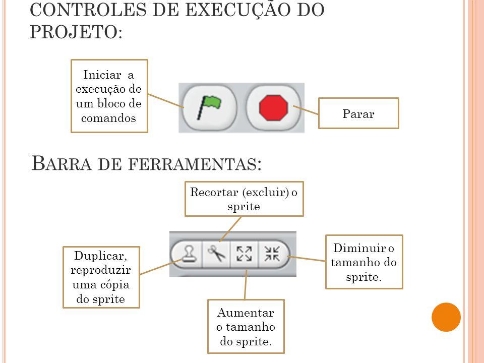 CONTROLES DE EXECUÇÃO DO PROJETO:
