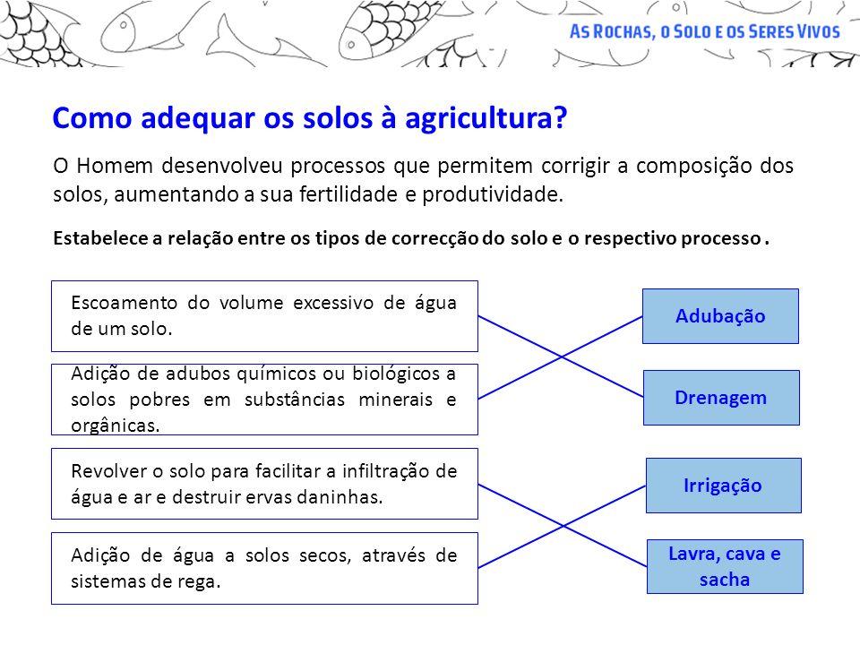 Como adequar os solos à agricultura