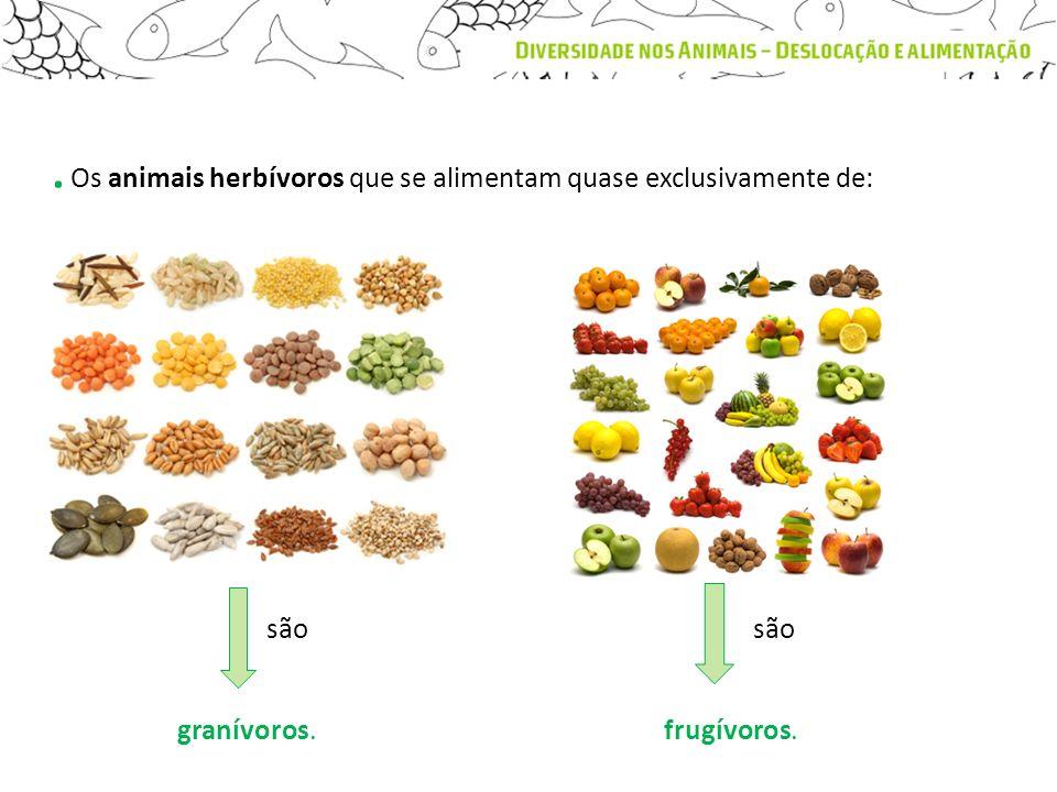 . Os animais herbívoros que se alimentam quase exclusivamente de: