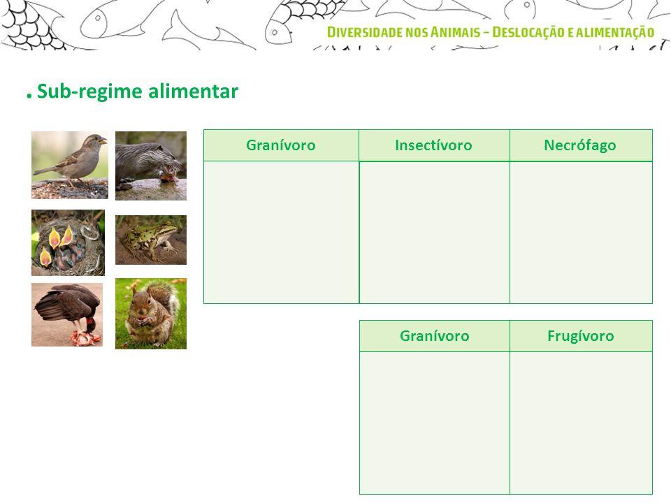 . Sub-regime alimentar Granívoro Insectívoro Necrófago Granívoro