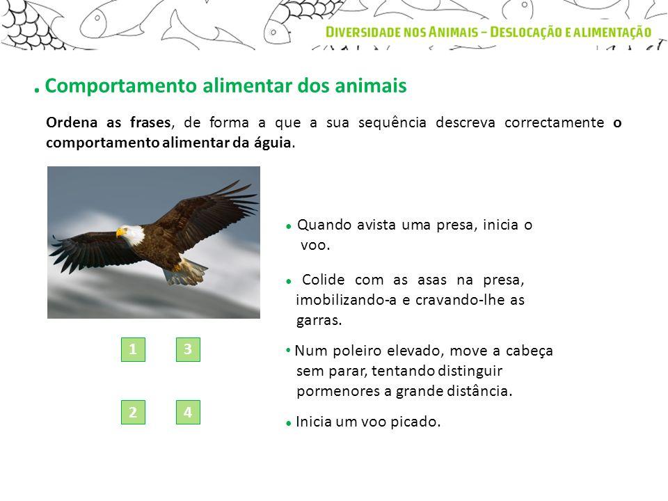. Comportamento alimentar dos animais