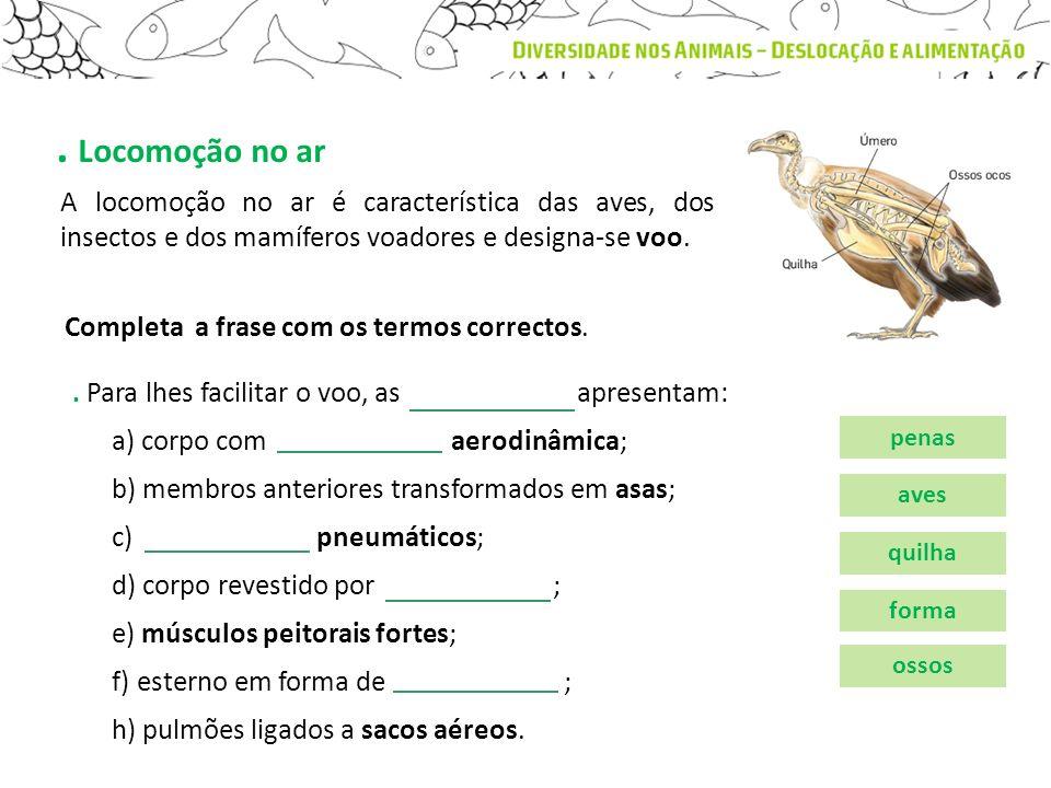 . Locomoção no ar A locomoção no ar é característica das aves, dos insectos e dos mamíferos voadores e designa-se voo.