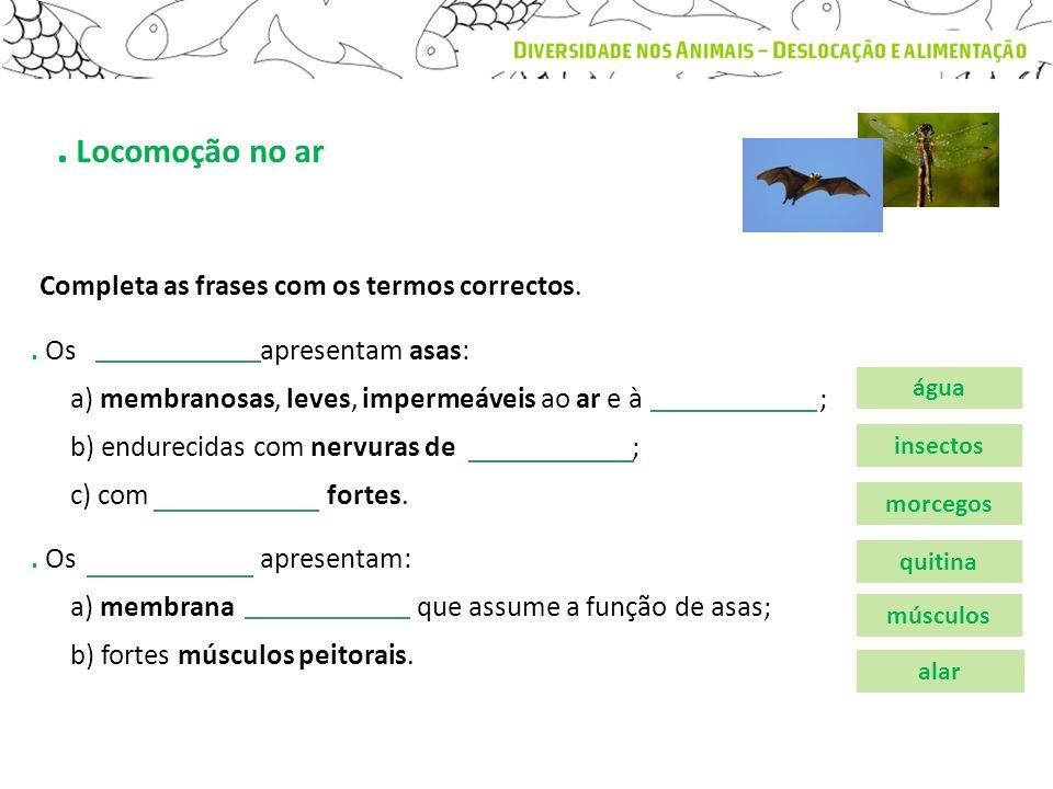 . Locomoção no ar Completa as frases com os termos correctos.