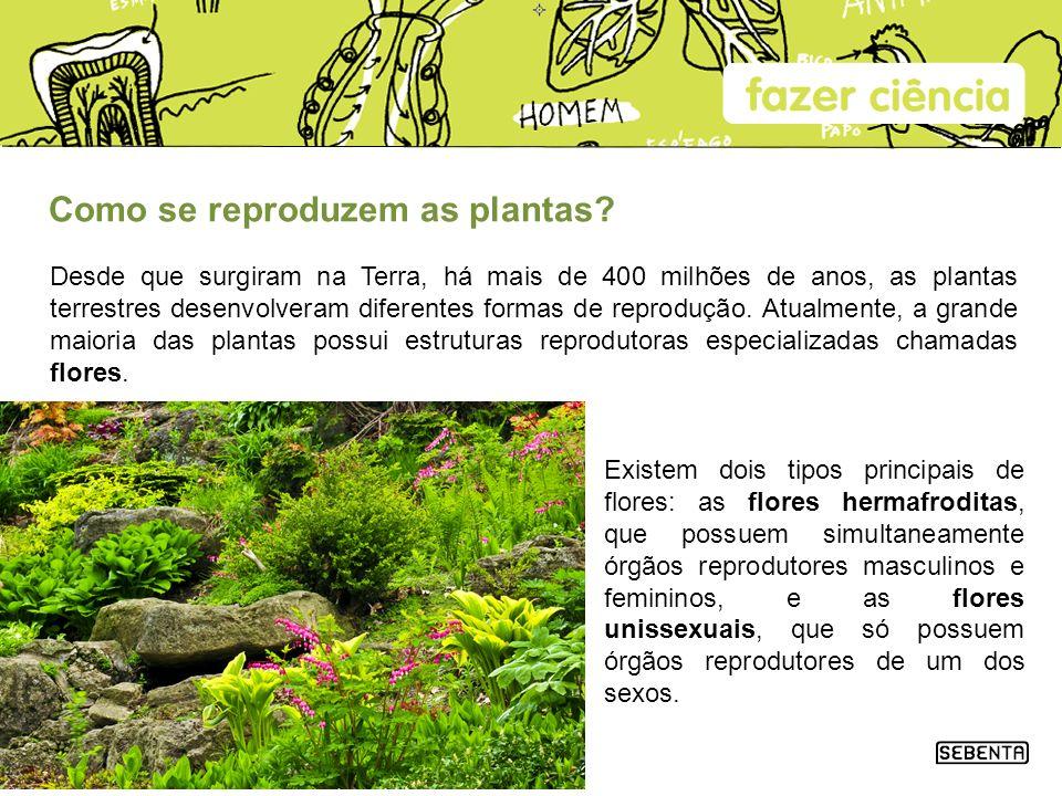 Como se reproduzem as plantas