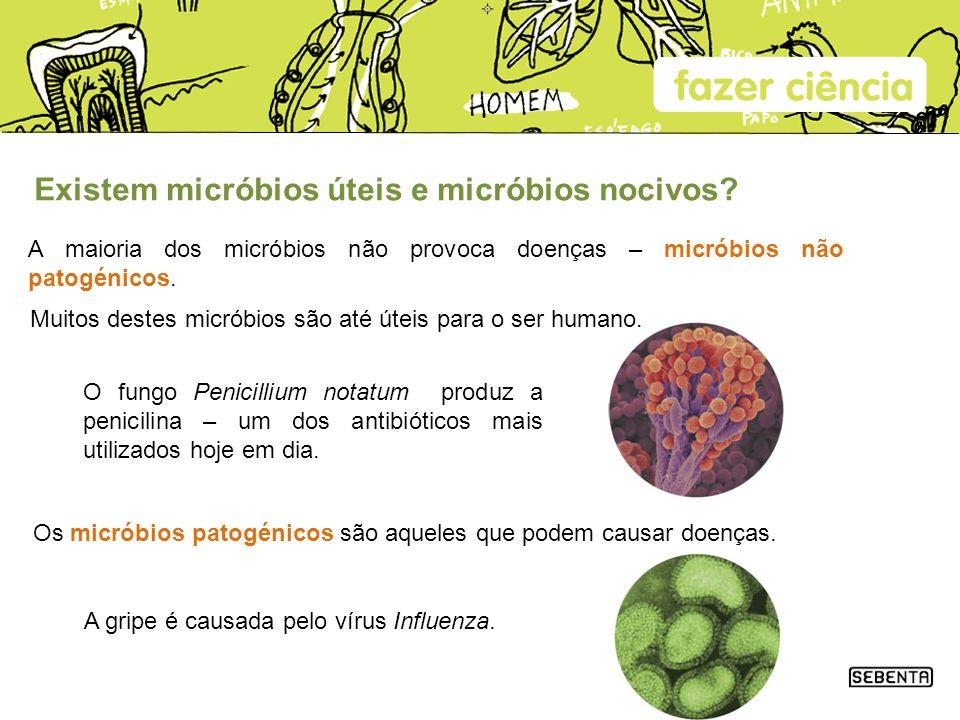 Existem micróbios úteis e micróbios nocivos