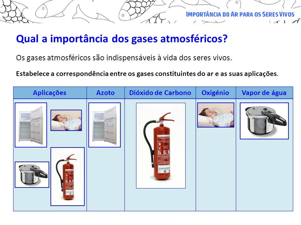 Qual a importância dos gases atmosféricos