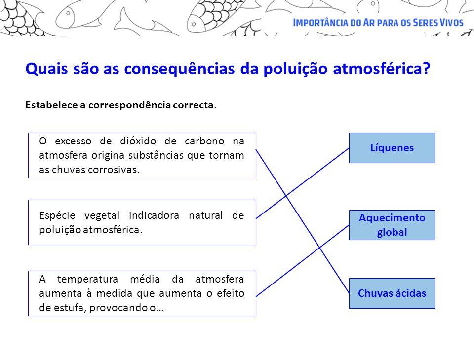 Quais são as consequências da poluição atmosférica