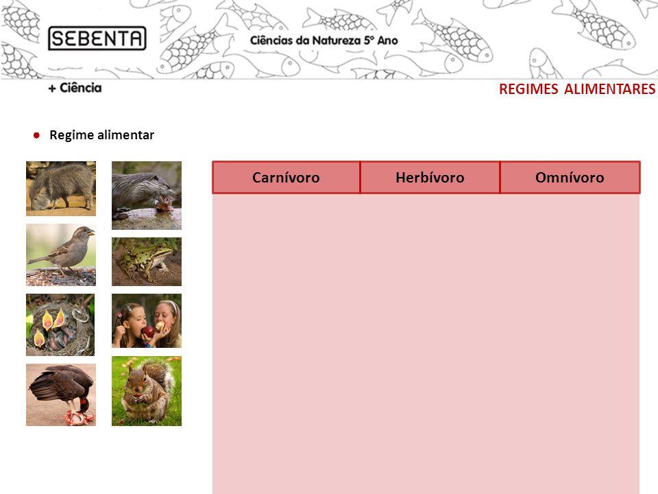 regimes alimentares ● Regime alimentar Carnívoro Herbívoro Omnívoro