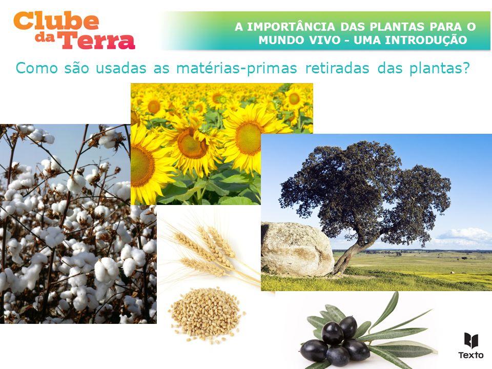A IMPORTÂNCIA DAS PLANTAS PARA O MUNDO VIVO - UMA INTRODUÇÃO