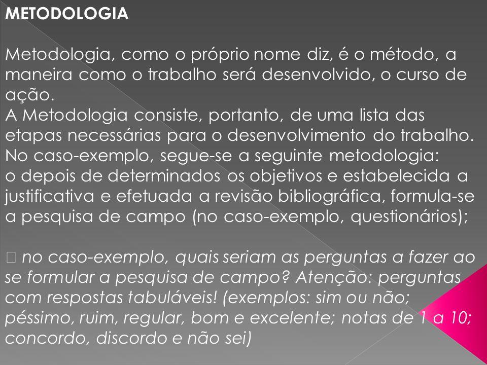 METODOLOGIA Metodologia, como o próprio nome diz, é o método, a maneira como o trabalho será desenvolvido, o curso de ação.