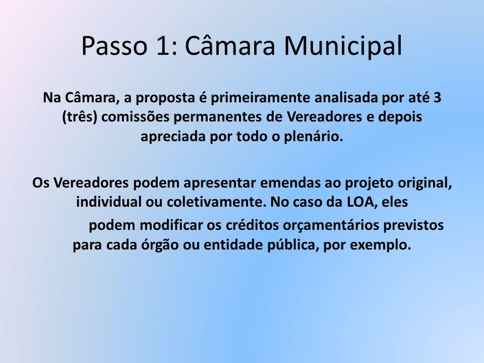 Passo 1: Câmara Municipal